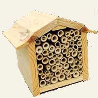 Bamboo Stakes Bee House