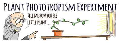 Darwin experiment on phototropism