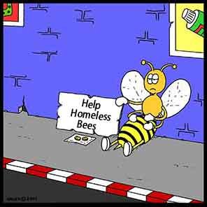 Homeless bee cartoon