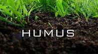 Soil Humus graphic