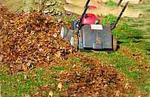 Mulch leaves with lawn mower